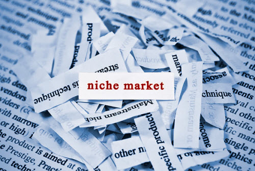 What To Do With Your Niche Statement