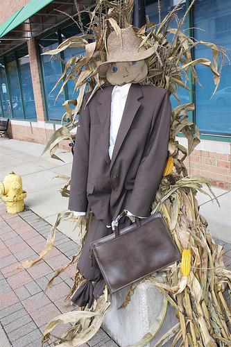 Professional Scarecrow
