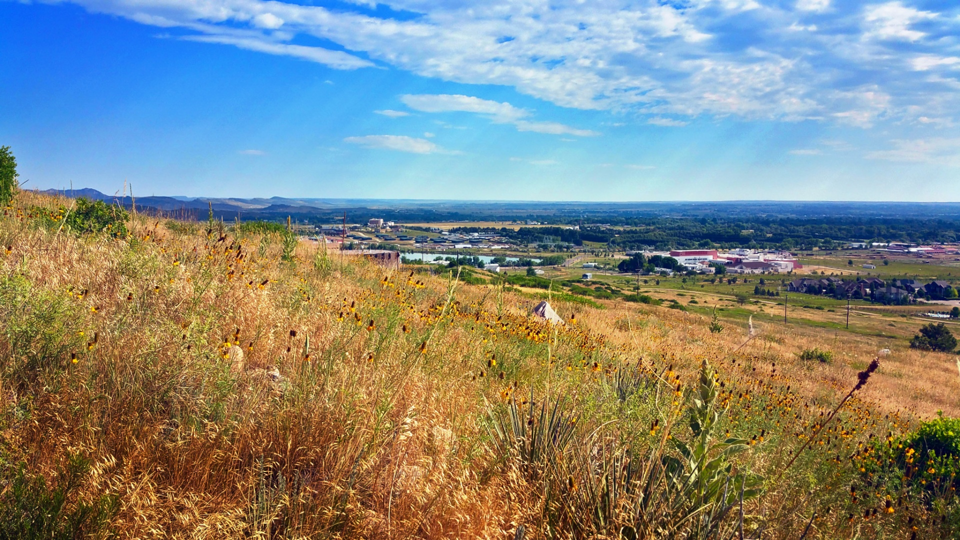 Moving to Fort Collins: Quick Start Guide