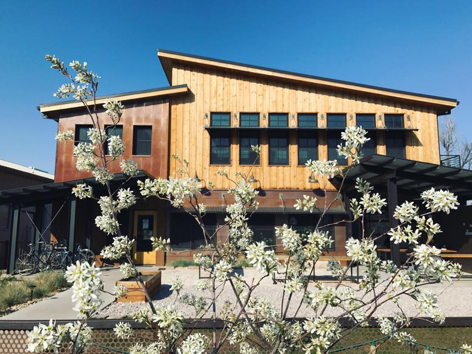 Photo showing the front of the Wolverine Farm building in spring with a flowering tree out front.